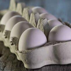 Preserving eggs forever