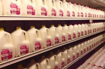 milk 2
