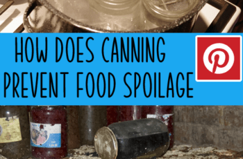 how does canning prevent food spoilage