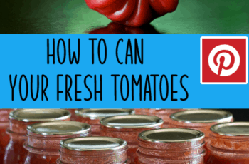 how to can tomatoes pin