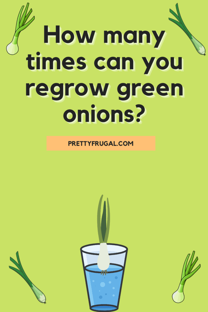 How many times can you regrow green onions