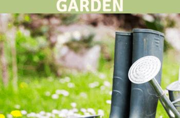 Spring Gardening Tips Essential Gardening Tips for Starting Your Spring Garden