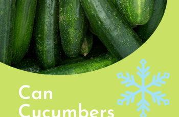 can cucumbers be frozen 1